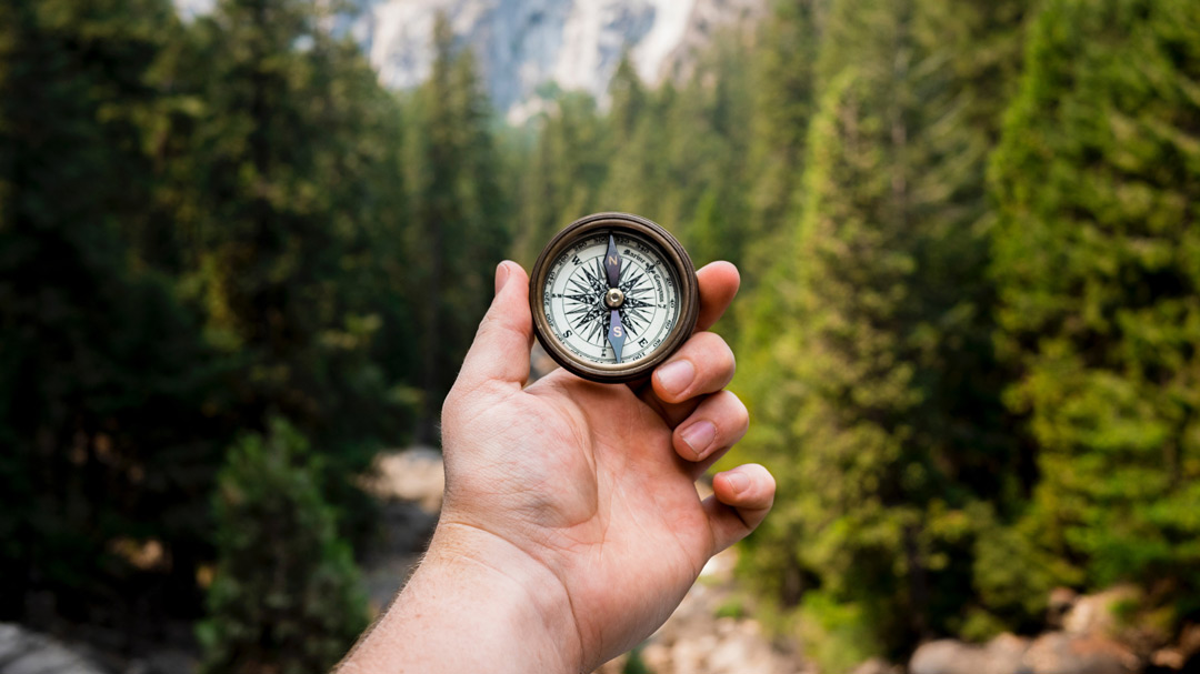 A hand holds a compass to navigate through a forest.